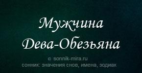мужчина Дева Обезьяна