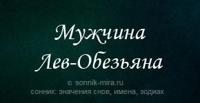 Мужчина Лев Обезьяна