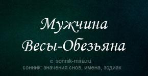мужчина Весы Обезьяна