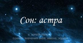 К чему снится астра